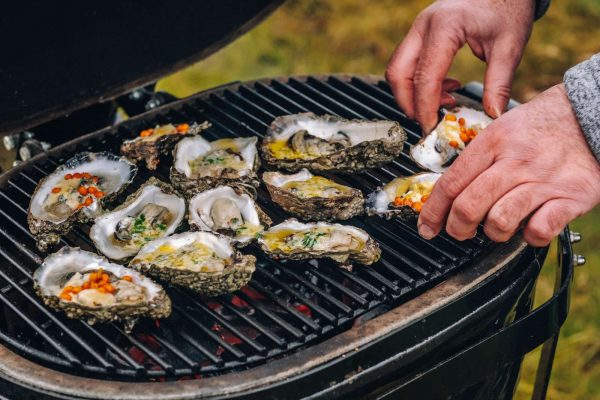 The Wadden Sea and the Oysters - Photo Thomas Høyrup Christensen (14) -1600px